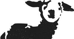oveja-negra-sola