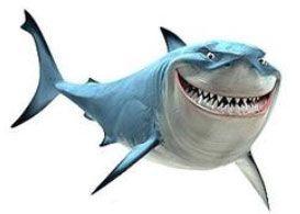 tiburon-a-por-el-dinero